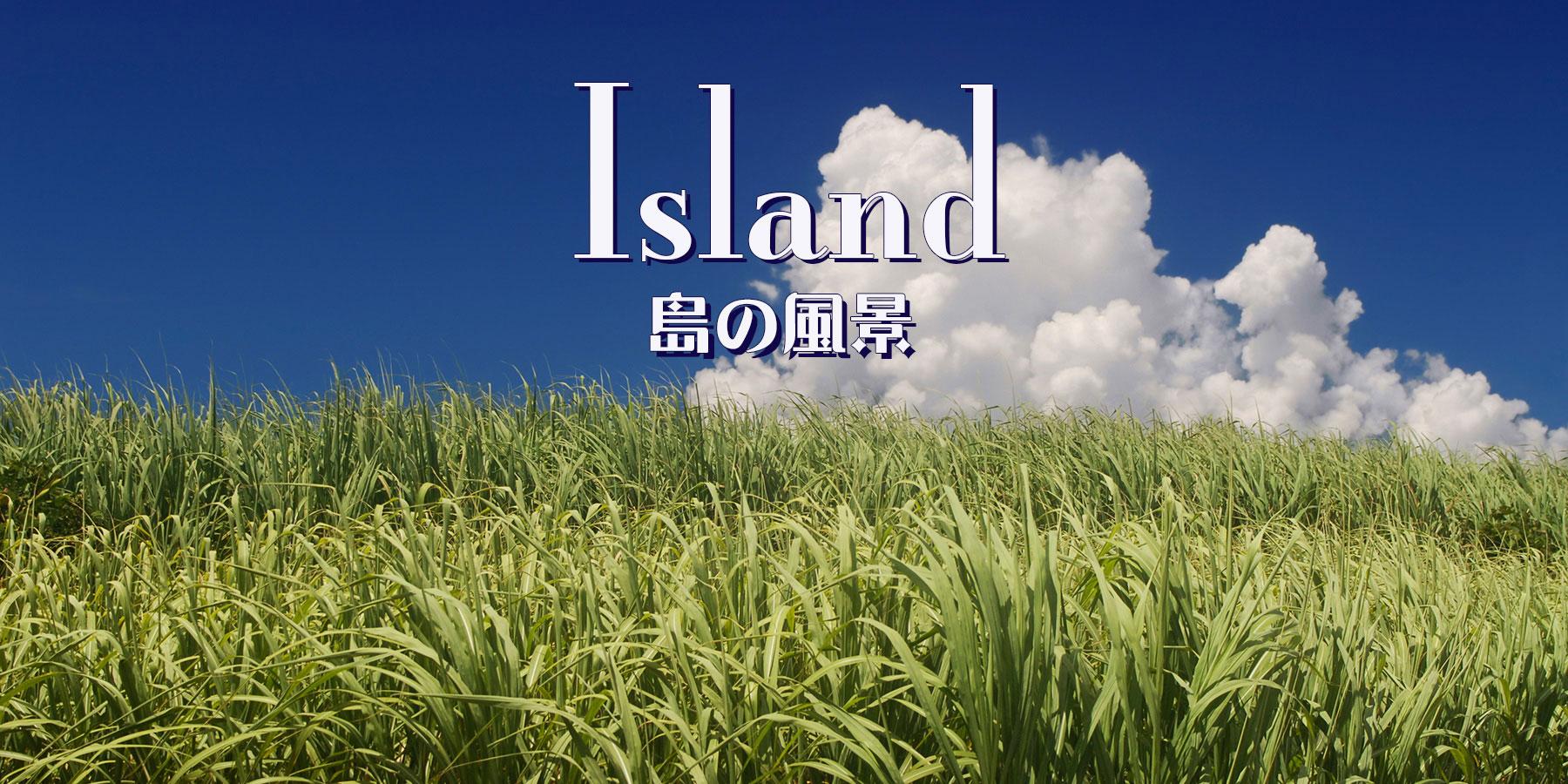 宮古島の風景