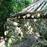 琉球石灰岩の石組みと屋根