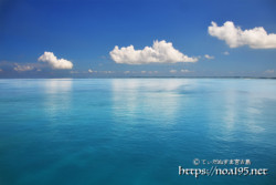 ベタ凪の青い海