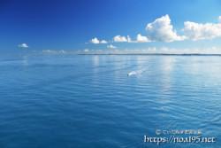 鏡のような青い海を走るボート