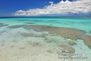 サンゴ礁の青い海
