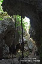 洞窟に根を張るガジュマル-ヌドゥクビアブ