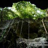 裂け目からのぞく植物の緑-ヌドゥクビアブ