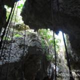 洞窟とガジュマルの気根-ヌドゥクビアブ