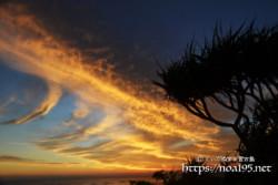 燃える雲とアダンの木