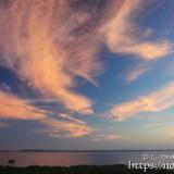青空に浮かぶピンクの羽衣