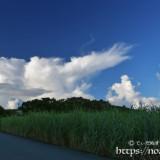 爆発する入道雲