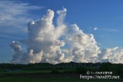 上へ上へと成長する入道雲