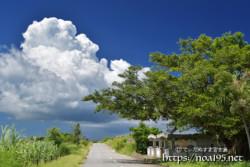 道を横切る入道雲