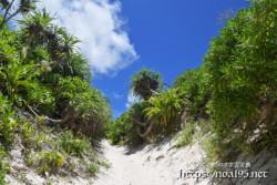 砂山ビーチからの帰り道