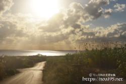 道の先の海に降り注ぐ光のシャワー