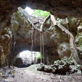 洞窟の出口に広がる独特の風景-牧山陣地壕
