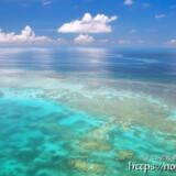 べた凪のサンゴ礁の海-三角点より-