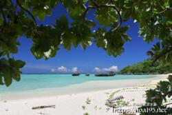 モンパの木陰で見るビーチと青い海
