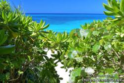 小道の先に見える青い海-長間浜-