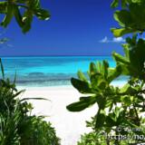 小道の先の青い海-長間浜-