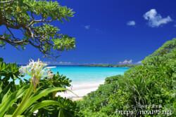 緑豊かなビーチの入り口-渡口の浜-
