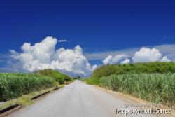 道の先の入道雲
