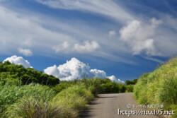 道の先にそびえる入道雲